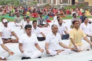 Yoga Wellness Centres