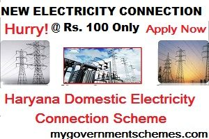 Haryana Domestic Electricity Connection Scheme