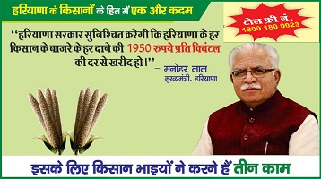 Haryana Farmer Registration For Selling Bajra